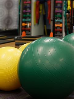 rehabilitation therapy balls